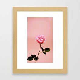 SINGLE LADY Framed Art Print