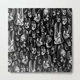 Carnivore B&W II Metal Print