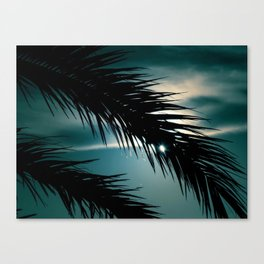 Take a look - nature photography - Canvas Print