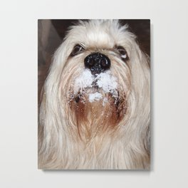 Umm...it's cold! Metal Print