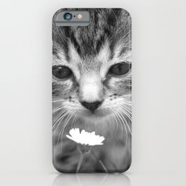 Cat Picture in Black and White iPhone Case