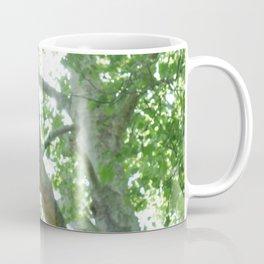 Large Old Tree Coffee Mug