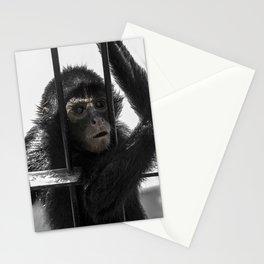 Monkey 4 Stationery Cards