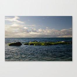 Baldwin Beach Canvas Print