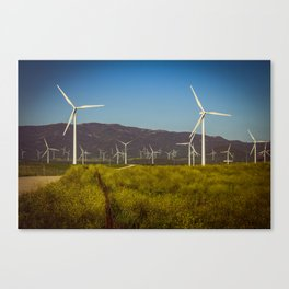 Group of fans in the mountains. Canvas Print