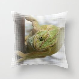 Chameleon: Fifty Shades of Green Throw Pillow