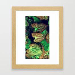 Plant Art, Simply Leaves Framed Art Print