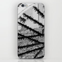 Winter spoke its intentions... iPhone Skin