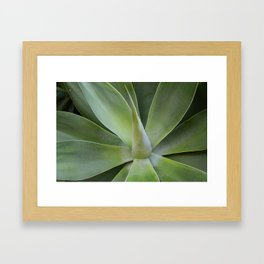 Green Plant Framed Art Print