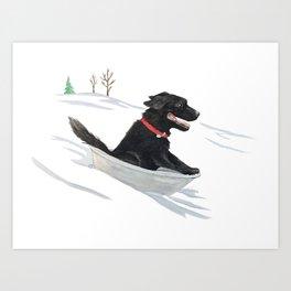 Black Dog Sledding - Watercolor Art Print