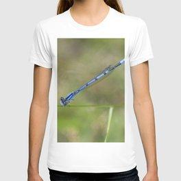 Blue Damselfly T-shirt