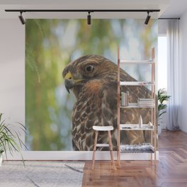 Young Red-Shouldered Hawk in a Desert Willow Wall Mural