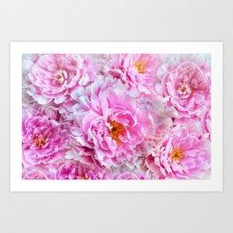 Shabby Chic Pink Peonies Art Print
