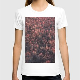 Glasswort T-shirt
