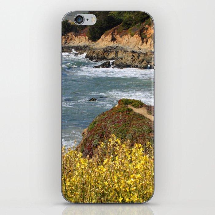 California Coast Overlook iPhone Skin