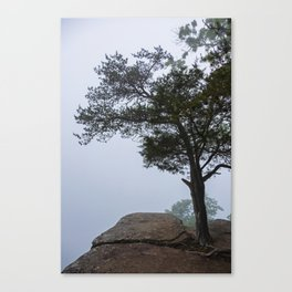 Heritage Point Overlook in the Fog Canvas Print