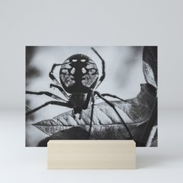 Spider's Silhouette. Orb-Weaver Black and White Photograph Mini Art Print