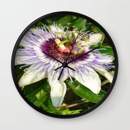 Passiflora Close Up With Garden Background  Wall Clock