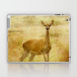 Female Red Deer Laptop & iPad Skin
