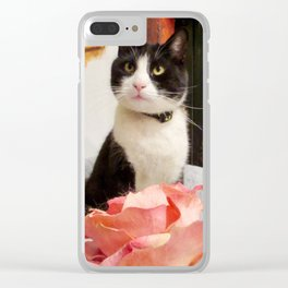 Orazio the charming cat Clear iPhone Case