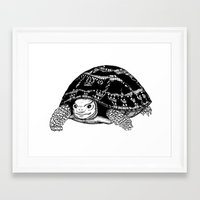 tortoise Framed Art Prints featuring Tortoise by Emma Barker