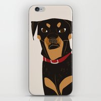rottweiler iPhone & iPod Skins featuring Rottweiler by Reimena Ashel Yee