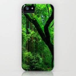 Enchanted forest mood II iPhone Case