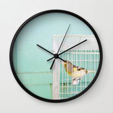 Finch against Turquoise Wall, Jerusalem Wall Clock