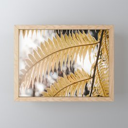Fern Leaves Photo | Plantlife Photography | Yellow Fern Leaves Close-up Framed Mini Art Print