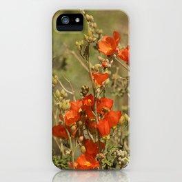 Desert Wildflower - 4 iPhone Case