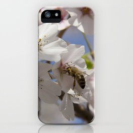 Honey Bee Pollinating Cherry Blossom iPhone Case
