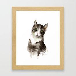 The Grey Cat Framed Art Print
