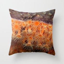 Zoantid Throw Pillow