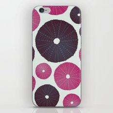 Sea's Design - Urchin Skeleton (Pink & Black) iPhone & iPod Skin