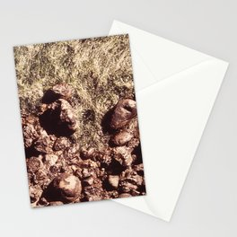 CALIFORNIA POINT LOBOS RESERVE NARA 543185 Stationery Cards