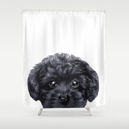 Black toy poodle Dog illustration original painting print Shower Curtain