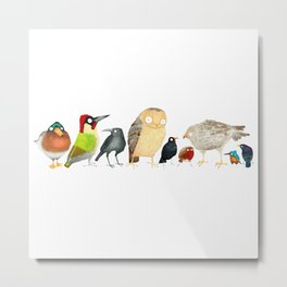 Woodland Bird Collection in white Metal Print