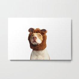 Bear Dog Metal Print