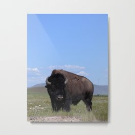 King of the Plains Metal Print