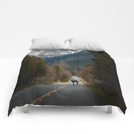 Crossing Paths Comforters