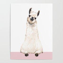 hi! Llama Poster