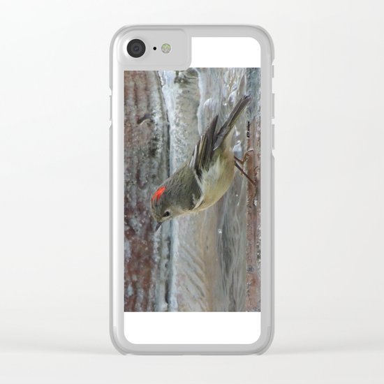Ruby-Crowned Kinglet At The Fountain Clear iPhone Case