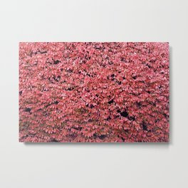 The Red Tree Metal Print