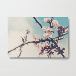 Blossoms 05 Metal Print