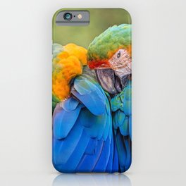 Birds Parrot Species Show Love iPhone Case