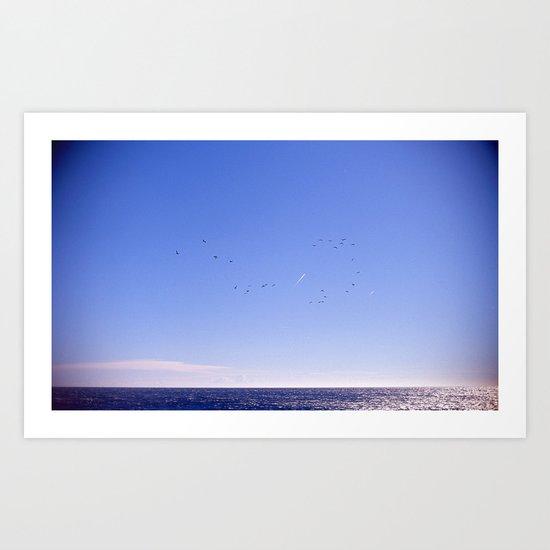 Birds Blue Sky Constellation Art Print