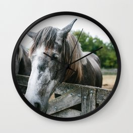 Horse II // Ohio Wall Clock