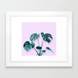 Monstera Palm on Musk Framed Art Print