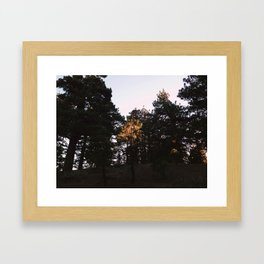 From the Fire Road Framed Art Print