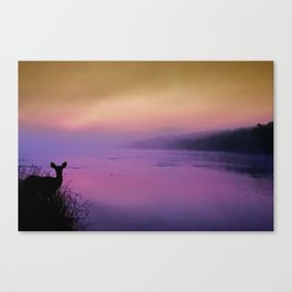 Caught in the Purple Light Canvas Print